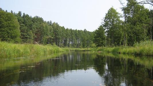 https://m.powiatszczycienski.pl/2016/08/orig/omulew-6747.png