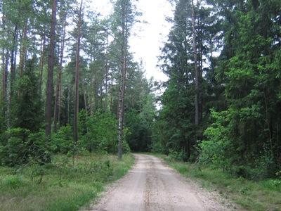https://m.powiatszczycienski.pl/2016/08/orig/szlak-maz-kurp-flora-6518.png