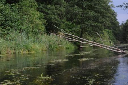 https://m.powiatszczycienski.pl/2016/08/orig/szlak-rzeki-omulwi1-6745.png