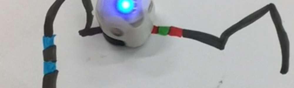 Robotyka w SP 6
