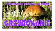 """X Festiwal Grzybów """"Grzybowanie 2017"""""""