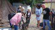 Psy z Radys w szczycieńskim schronisku