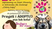 Światowy Dzień Zwierząt już w niedzielę 4 października