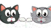 Opieka uczniów z klasy 1a i 1b nad kotkami