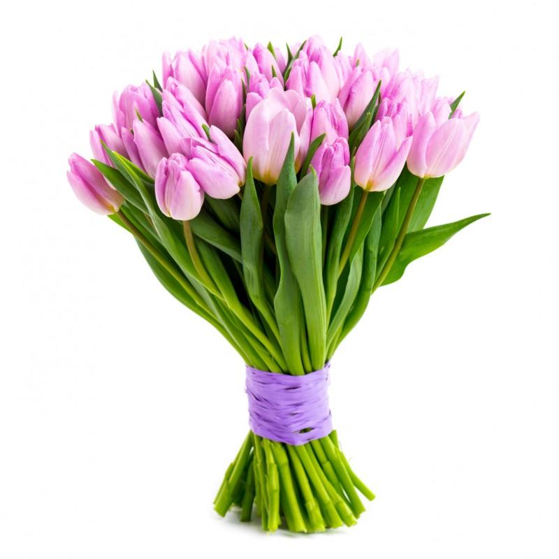 https://m.powiatszczycienski.pl/2021/03/orig/bukiet-z-tulipanow-38523.jpg