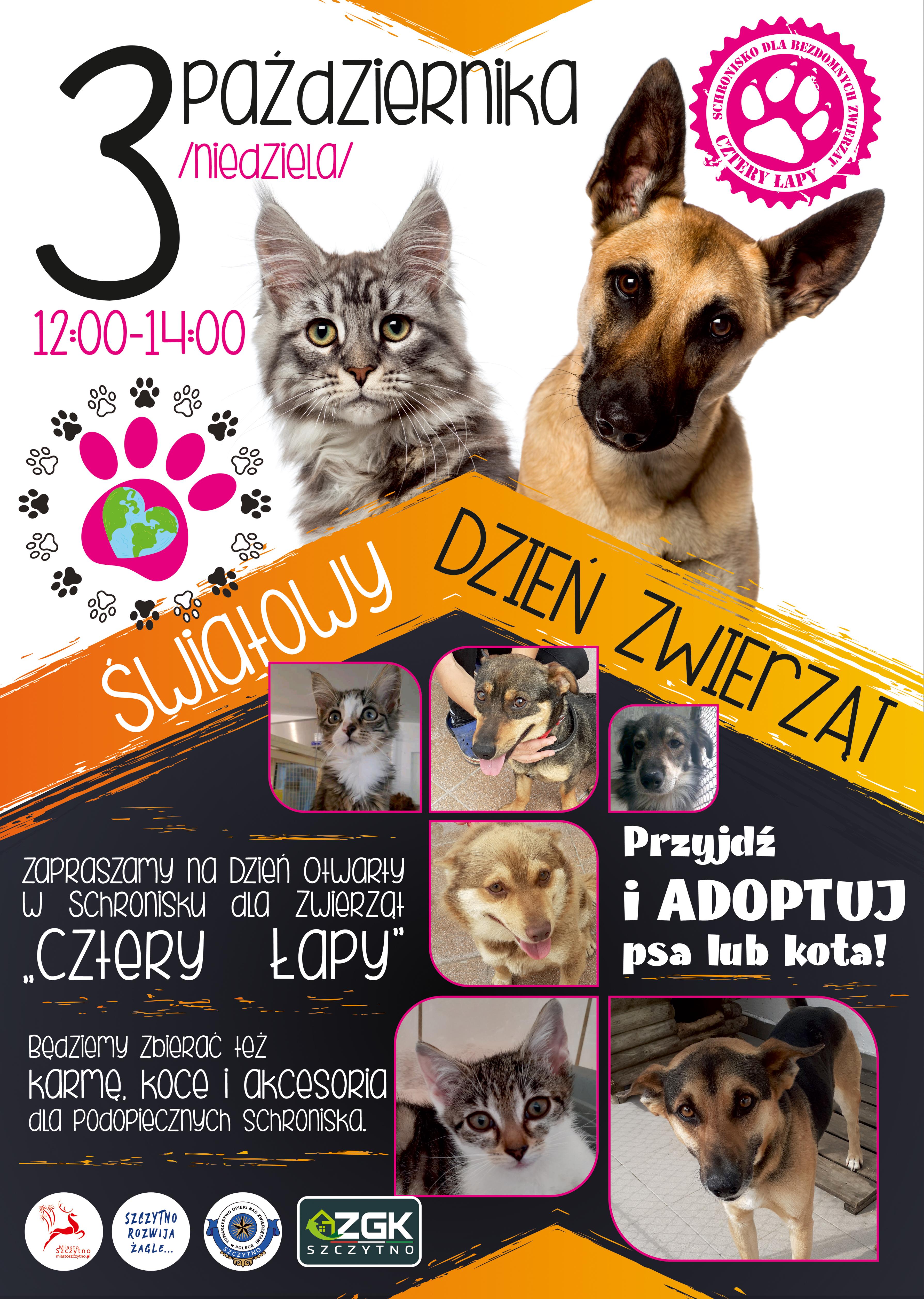 https://m.powiatszczycienski.pl/2021/09/orig/plakat-swiatowy-dzien-zwierzaka-43597.jpg